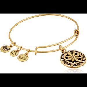 ALEX AND ANI compass bracelets